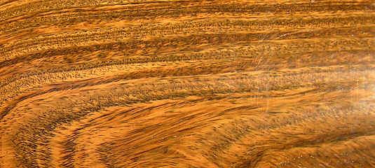 Lignum Vitae Ironwood Find It In Woodfinder